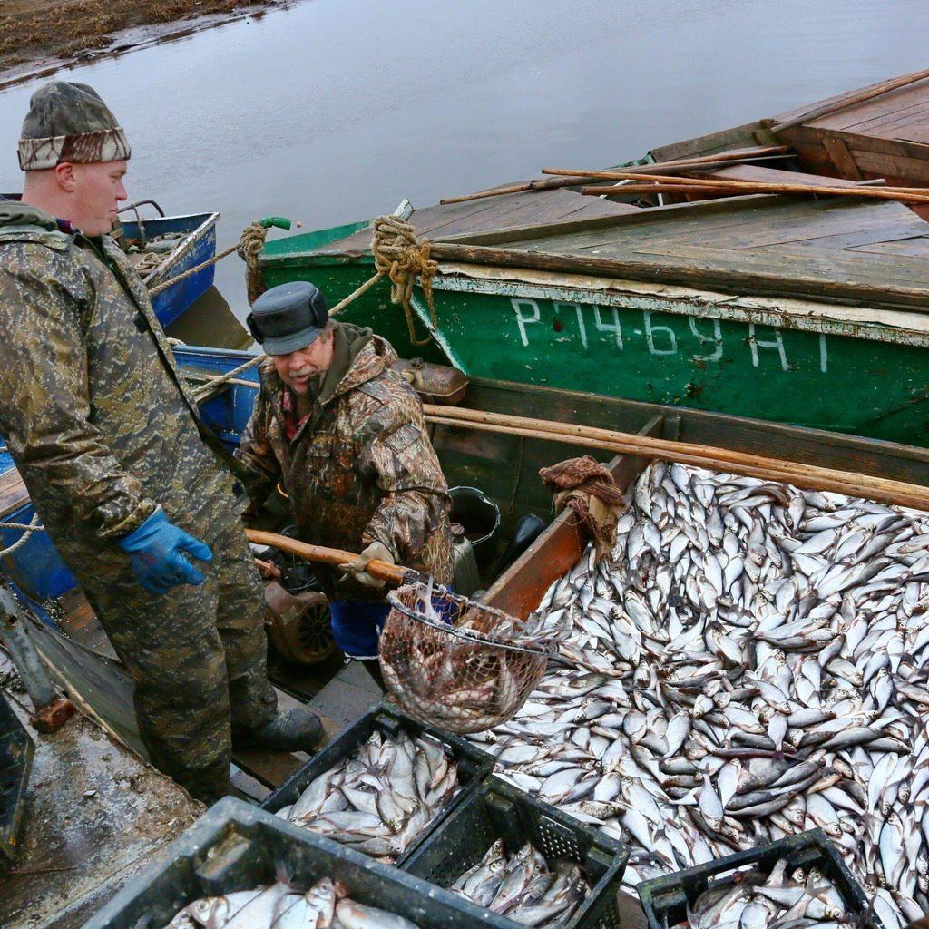 великие луки рыбаки